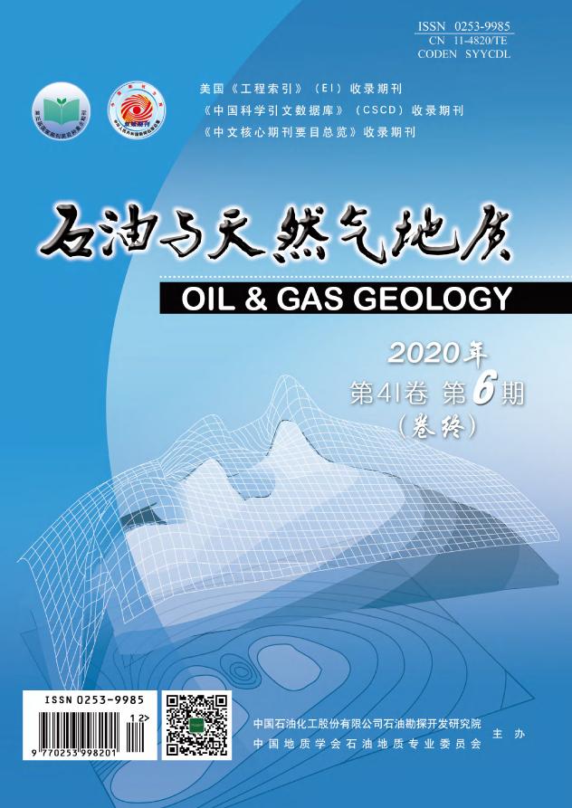 石油天然气地质